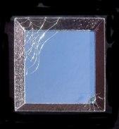 Spider mirror SH245