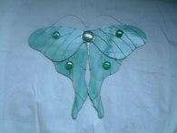 Moth SH208