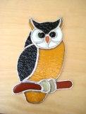 Owl SH539